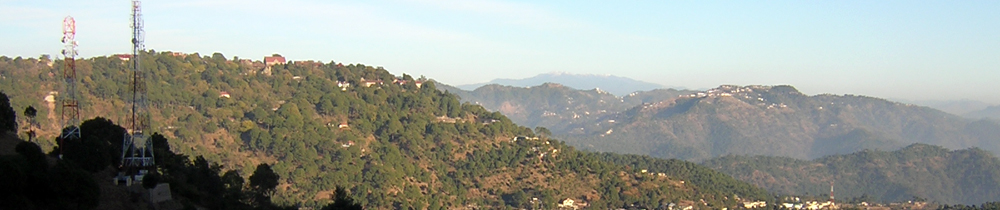 BUY PROPERTY IN KASAULI | BUY LAND IN KASAULI